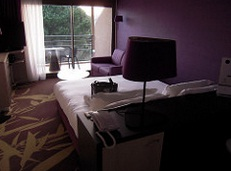 hotel ibis la ciotat